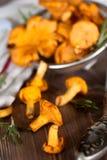 Chanterelles dans le tamis Photo stock