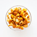 Chanterelles in a glass bowl Stock Image