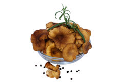 Chanterelles. With green rosemary in glass bowl (cantharellus cibarius Royalty Free Stock Photo