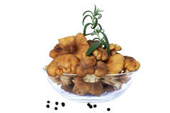 Chanterelles. With green rosemary in glass bowl (cantharellus cibarius Royalty Free Stock Photos