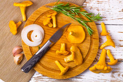 Chanterelles and knife Royalty Free Stock Photo