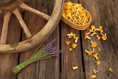 Chanterelles and lavender on wooden background with cartwheel Stock Image
