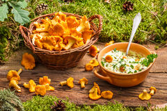 Chanterelles mushroom with cream and parsley Royalty Free Stock Images