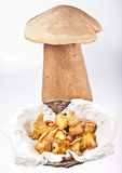 Chanterelles Stock Photos