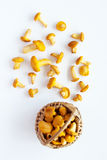 Chanterelles in a wicker basket Stock Images