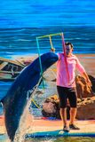 Chanthaburi, Thailand - 5. Mai 2015: Trainer unterrichtet Delphin Lizenzfreie Stockbilder