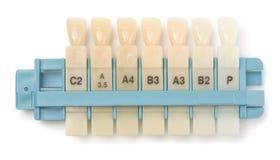 Échantillons dentaires de dents Photographie stock libre de droits