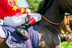 CHANTILLY - 15 JUNI: Levensstijl in Prix DE Diane in renbaan, dichtbij Parijs op 15 Juni, 2014, Frankrijk Stock Fotografie