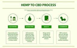 Chanvre à infographic horizontal de processus de CBD illustration libre de droits