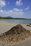 Chao Mai beach, Trang province, Thailand. Stock Image