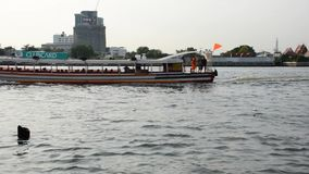 Chao Phraya Express Boat - passagerareservice arkivfilmer