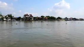 Chao Phraya River dans Pakkret banque de vidéos