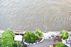 chaophrayaflod Royaltyfri Bild