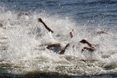 Chaos of swimming arms in the water Stock Images