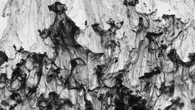 Chaotic movement of drops of black paint in water. Abstract. Ink in water stock video footage