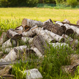 Chaotic pile of firewood logs lying Stock Photography