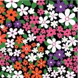 Chaotische Blumen Lizenzfreies Stockbild