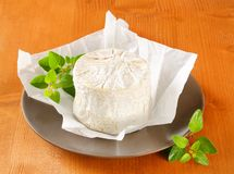 Chaource cheese Royalty Free Stock Image