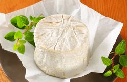 Chaource cheese Royalty Free Stock Images