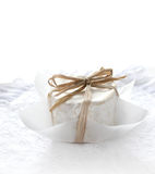 Chaource Cheese Royalty Free Stock Photos