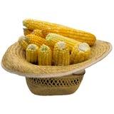 Chapéu com milho Imagem de Stock