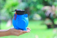 Chapéu da graduação da terra arrendada da mão da mulher no azul leitão com fundo verde natural, dinheiro de salvamento para o con fotos de stock