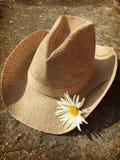 Chapéu da margarida da vaqueira foto de stock