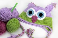 Chapéu de confecção de malhas colorido da coruja, skein, gancho Imagens de Stock