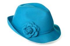 Chapéu de feltro da cerceta Imagem de Stock