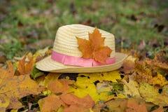 Chapéu de palha moderno em um jardim do outono Fotos de Stock Royalty Free