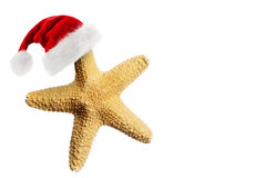 Chapéu de Santa Claus na estrela do mar Foto de Stock Royalty Free