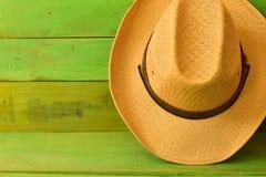Chapéu de vaqueiro de Brown na textura de madeira verde Imagens de Stock
