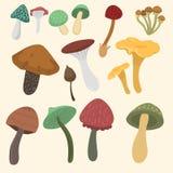 Chapéu diferente do vermelho da ilustração do vetor do projeto do estilo da arte do fungo de cogumelos do cogumelo venenoso do ag ilustração stock