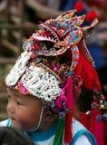 Chapéu do tigre Imagens de Stock