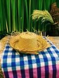 chapéu dos fazendeiros na exploração agrícola Imagem de Stock Royalty Free