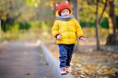 Chapéu vestindo do menino bonito da criança com as orelhas que jogam fora no dia do outono imagem de stock royalty free