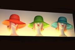 Chapéus das senhoras Foto de Stock Royalty Free