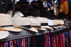 Chapéus de Panamá Fotos de Stock