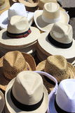 Chapéus de Panamá Fotografia de Stock