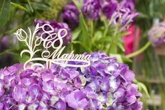 Chapa de madeira da hortênsia roxa bonita na língua de russo desde o 8 de março Fotos de Stock