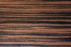 Chapa oscura del ébano, fondo de madera natural en macro Foto extremadamente de alta resolución Foto de archivo libre de regalías