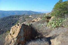 Chaparal en canyon de Laguna, Laguna Beach, CA Images libres de droits