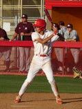 Chaparral Firebird-Baseball 2019 gegen Berg Ridge Mountain Lions stockfotografie