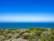 Chaparral, ocen and blue sky. Horizon of pacific ocean with mist over ocean and sunny chaparral or brush in foreground as seen from trail to Montara Mountain royalty free stock images