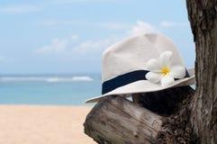 Chapeau avec le plumeria Images stock