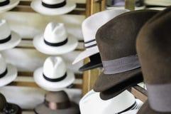 Chapeau brun élégant Image stock