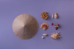 Chapeau conique près des coquillages Photos libres de droits