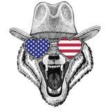 Chapeau de cowboy de port animal d'animal sauvage de Wolf Dog Wild Image libre de droits