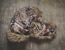 Chapeau de fourrure pour le temps d'hiver Images stock