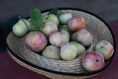 Chapeau de paille avec les pommes juteuses rouges Image libre de droits